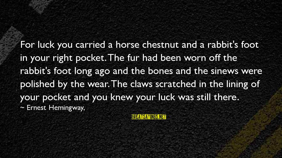 Horse Chestnut Sayings By Ernest Hemingway,: For luck you carried a horse chestnut and a rabbit's foot in your right pocket.