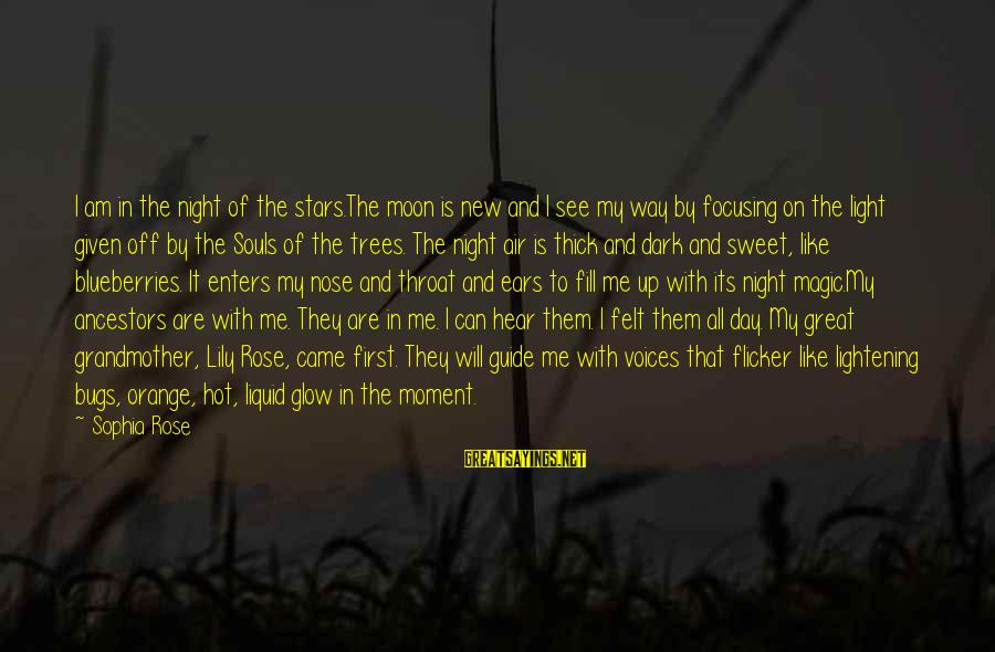 Hot Ears Sayings By Sophia Rose: I am in the night of the stars.The moon is new and I see my