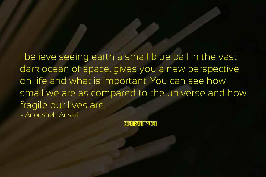 How Small We Are In The Universe Sayings By Anousheh Ansari: I believe seeing earth a small blue ball in the vast dark ocean of space,