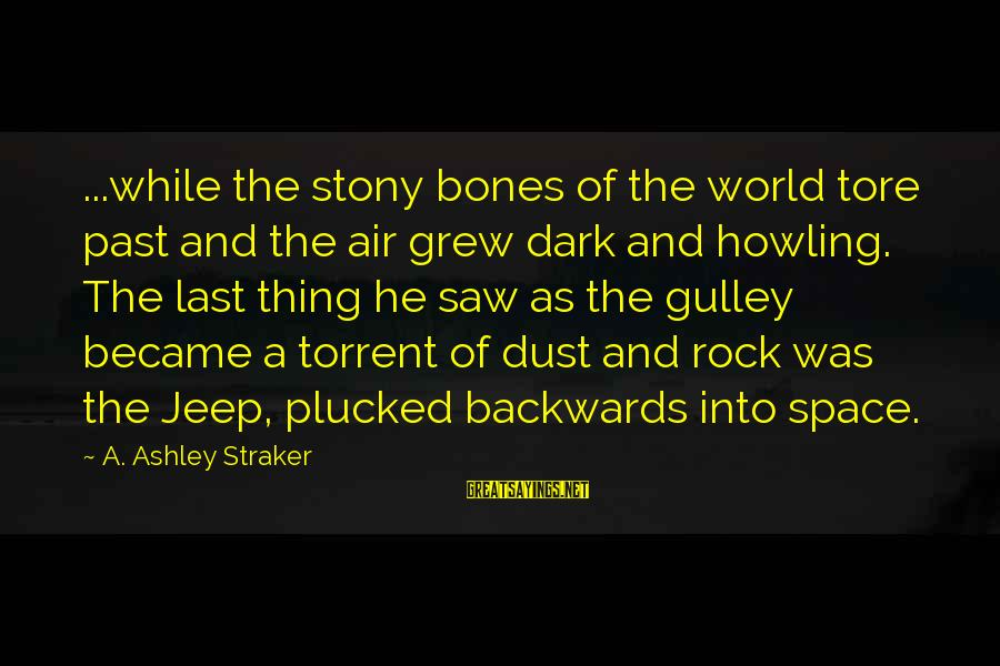 Howling Sayings By A. Ashley Straker: ...while the stony bones of the world tore past and the air grew dark and