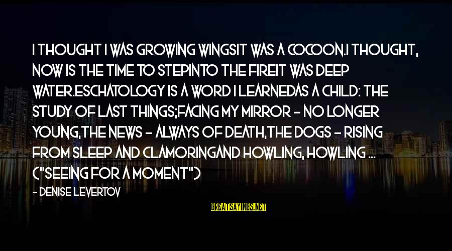 Howling Sayings By Denise Levertov: I thought I was growing wingsit was a cocoon.I thought, now is the time to