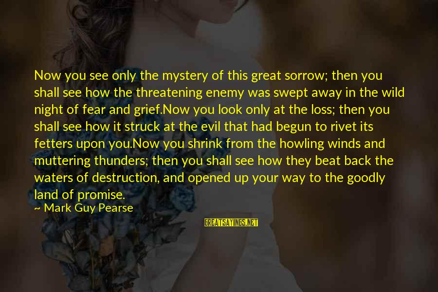 Howling Sayings By Mark Guy Pearse: Now you see only the mystery of this great sorrow; then you shall see how