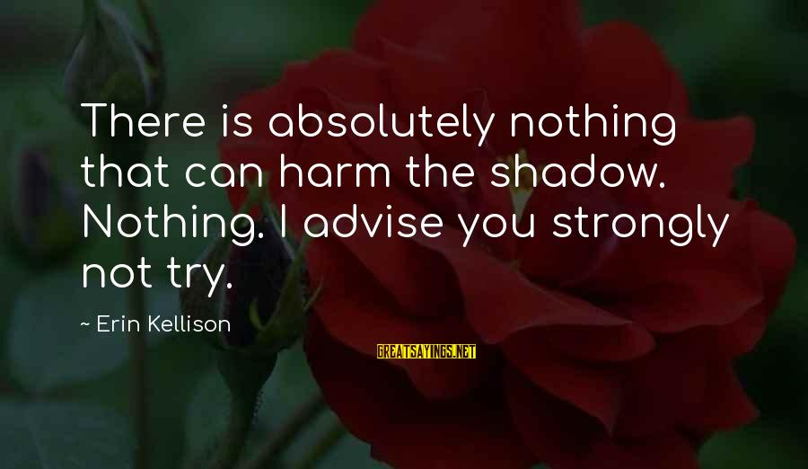 Hugo De Vries Sayings By Erin Kellison: There is absolutely nothing that can harm the shadow. Nothing. I advise you strongly not