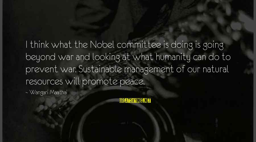 Humanity And War Sayings By Wangari Maathai: I think what the Nobel committee is doing is going beyond war and looking at