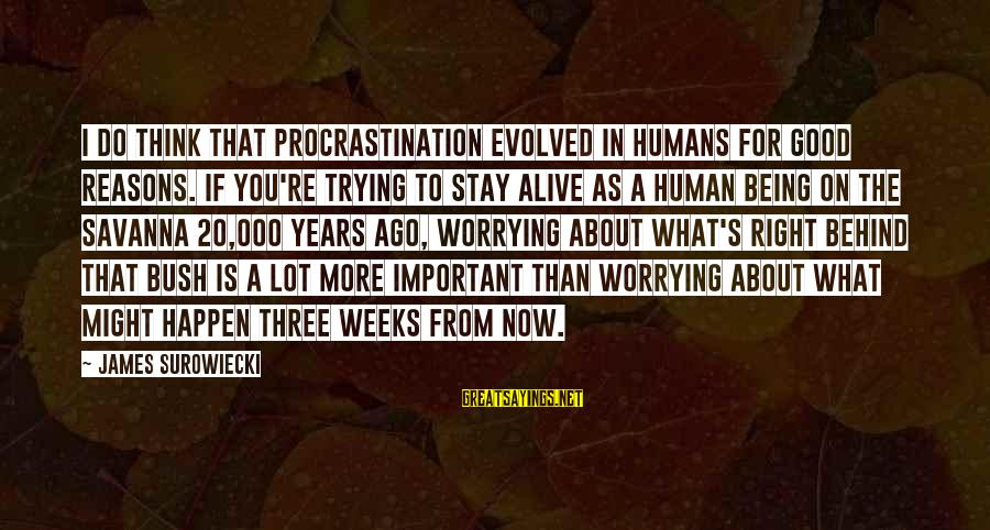 Humans Being Good Sayings By James Surowiecki: I do think that procrastination evolved in humans for good reasons. If you're trying to