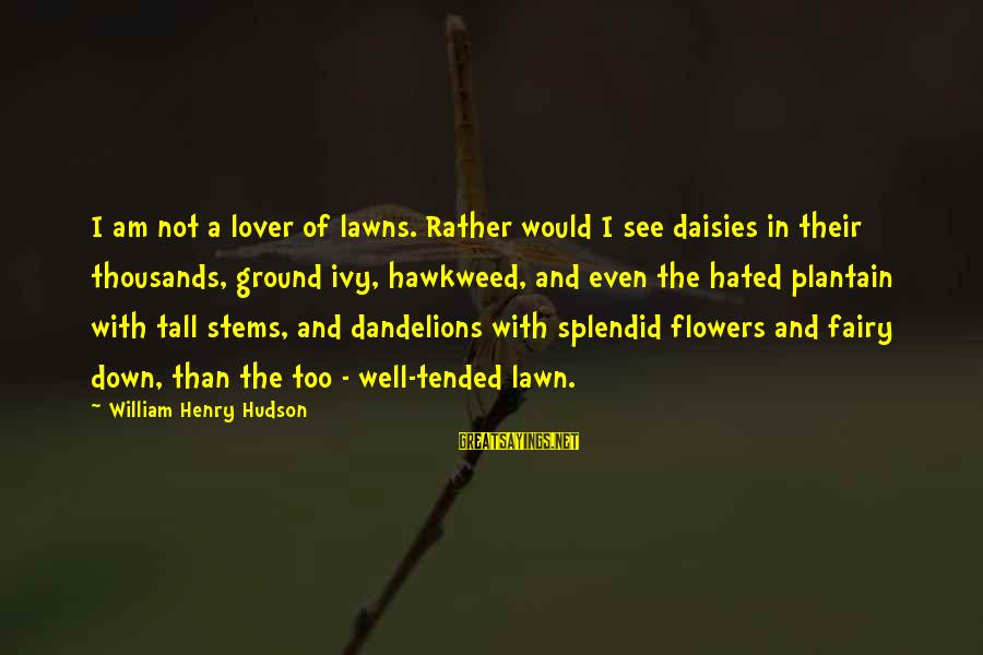 I Am A Nature Lover Sayings By William Henry Hudson: I am not a lover of lawns. Rather would I see daisies in their thousands,
