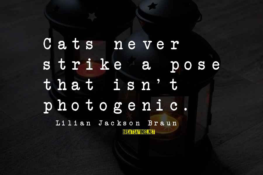 I Am Not Photogenic Sayings By Lilian Jackson Braun: Cats never strike a pose that isn't photogenic.