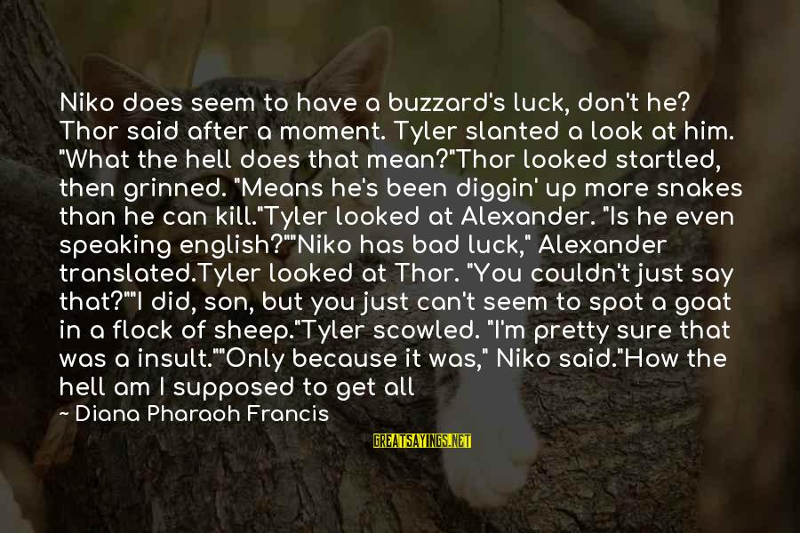 I Am Pretty Because Sayings By Diana Pharaoh Francis: Niko does seem to have a buzzard's luck, don't he? Thor said after a moment.