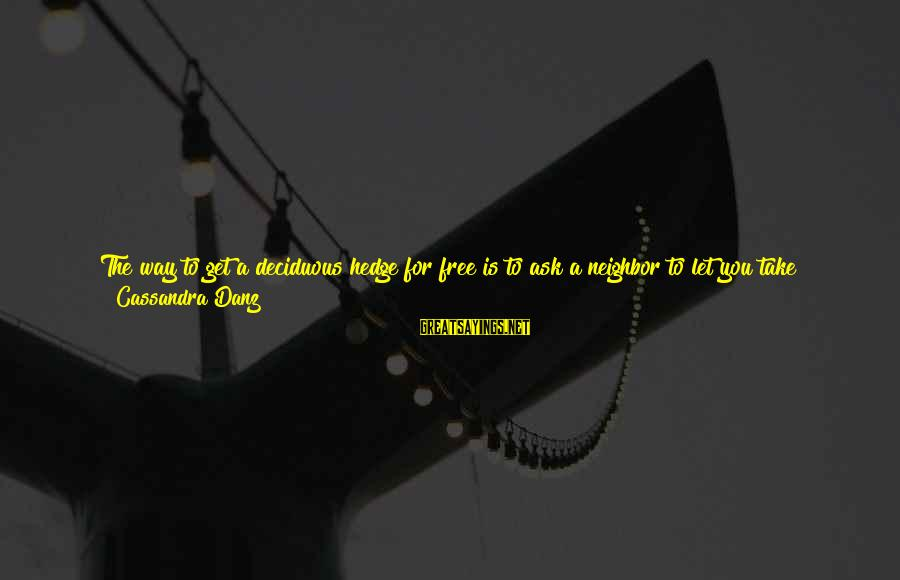 I Don't Depend On You Sayings By Cassandra Danz: The way to get a deciduous hedge for free is to ask a neighbor to