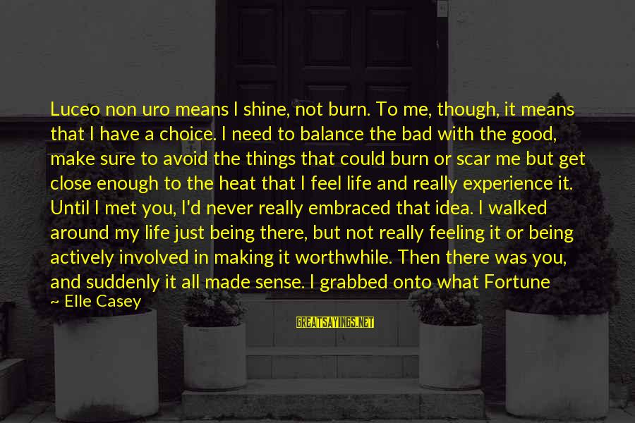 I Have A Bad Feeling Sayings By Elle Casey: Luceo non uro means I shine, not burn. To me, though, it means that I