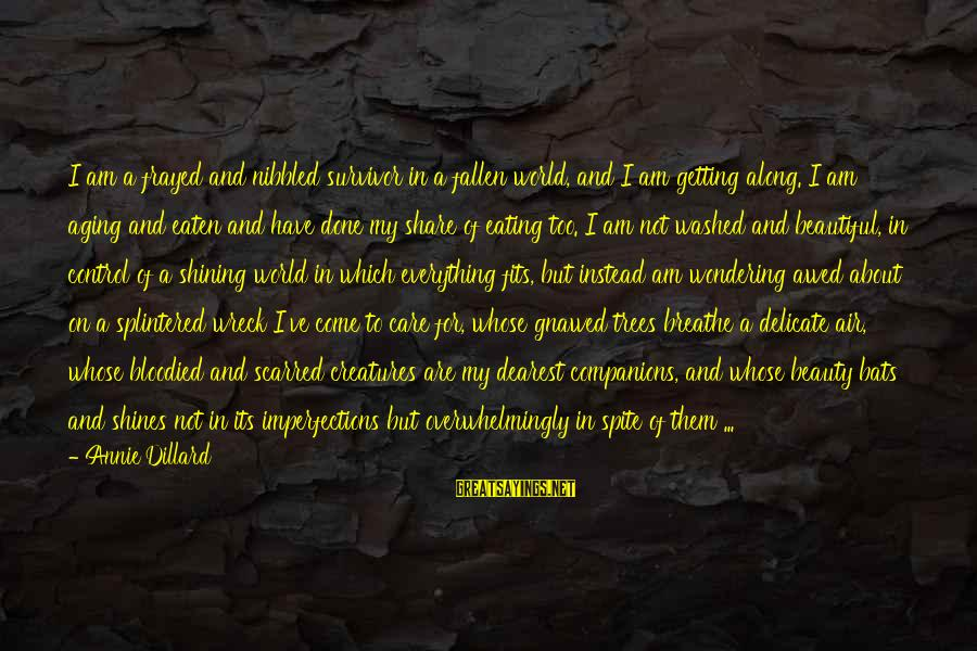 I Have Fallen Sayings By Annie Dillard: I am a frayed and nibbled survivor in a fallen world, and I am getting