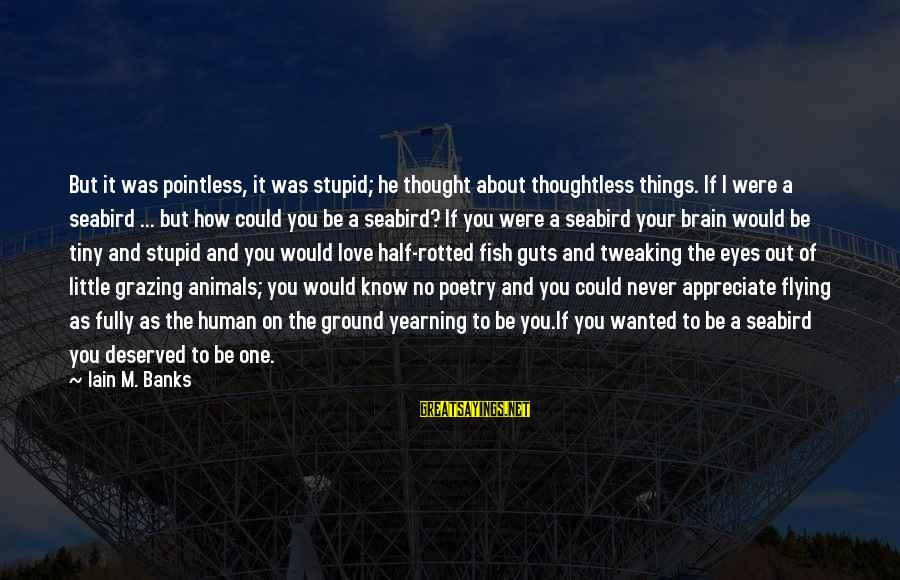 I Love You Thought Sayings By Iain M. Banks: But it was pointless, it was stupid; he thought about thoughtless things. If I were