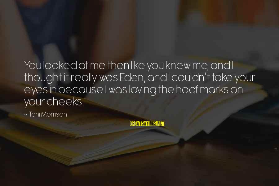 I Love You Thought Sayings By Toni Morrison: You looked at me then like you knew me, and I thought it really was