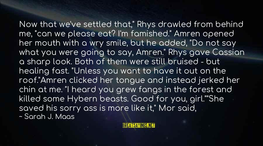 """I Say Sorry Sayings By Sarah J. Maas: Now that we've settled that,"""" Rhys drawled from behind me, """"can we please eat? I'm"""