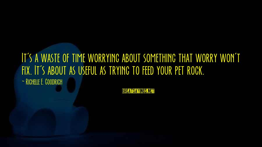 I Won't Waste My Time On You Sayings By Richelle E. Goodrich: It's a waste of time worrying about something that worry won't fix. It's about as