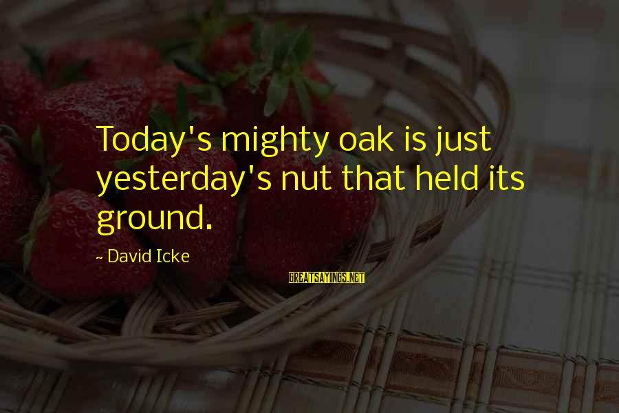 Icke's Sayings By David Icke: Today's mighty oak is just yesterday's nut that held its ground.