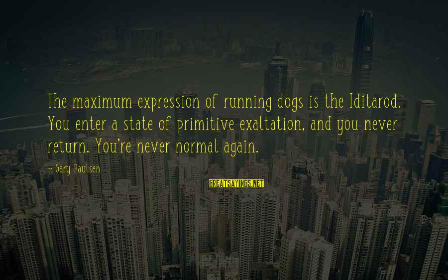 Iditarod Sayings By Gary Paulsen: The maximum expression of running dogs is the Iditarod. You enter a state of primitive