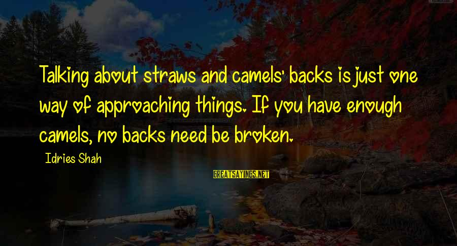 Idries Shah Sayings By Idries Shah: Talking about straws and camels' backs is just one way of approaching things. If you