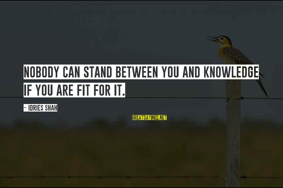 Idries Shah Sayings By Idries Shah: Nobody can stand between you and knowledge if you are fit for it.