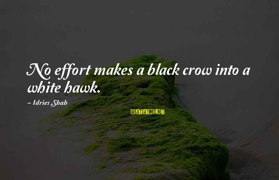 Idries Shah Sayings By Idries Shah: No effort makes a black crow into a white hawk.