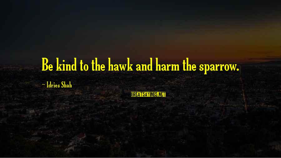 Idries Shah Sayings By Idries Shah: Be kind to the hawk and harm the sparrow.