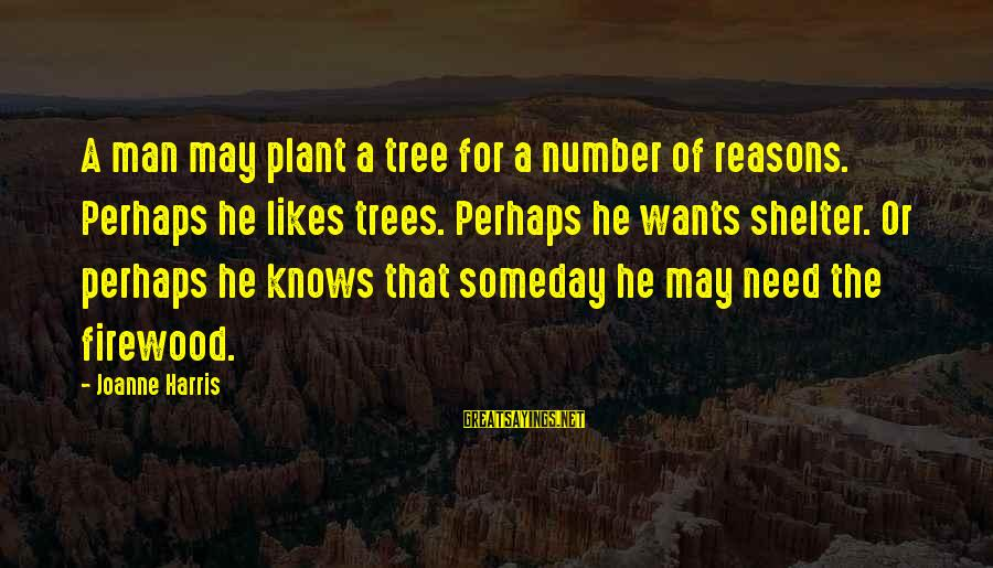 If He Really Likes You Sayings By Joanne Harris: A man may plant a tree for a number of reasons. Perhaps he likes trees.