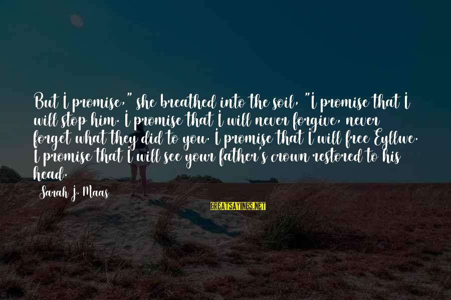 """I'll Never Forget Him Sayings By Sarah J. Maas: But I promise,"""" she breathed into the soil, """"I promise that I will stop him."""