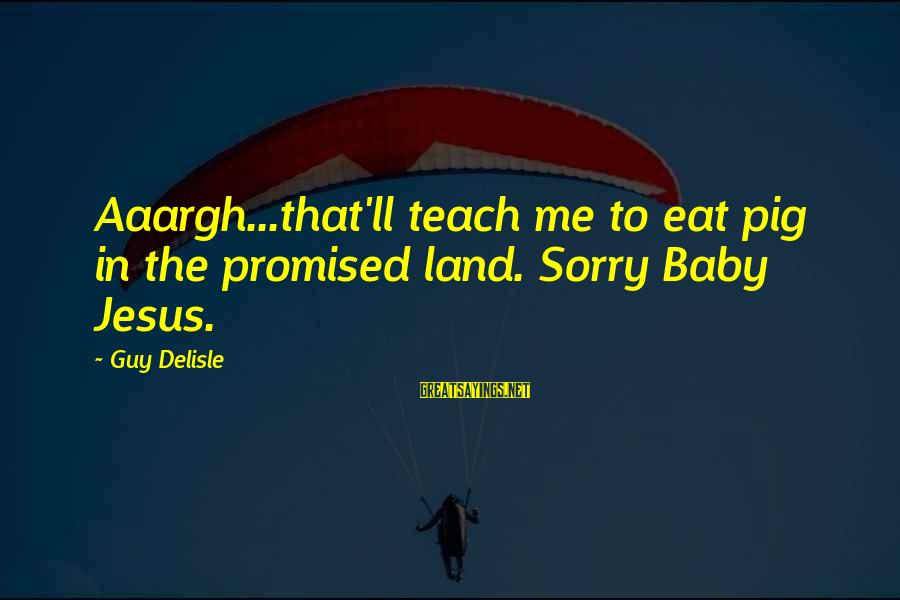 I'm So Sorry Baby Sayings By Guy Delisle: Aaargh...that'll teach me to eat pig in the promised land. Sorry Baby Jesus.