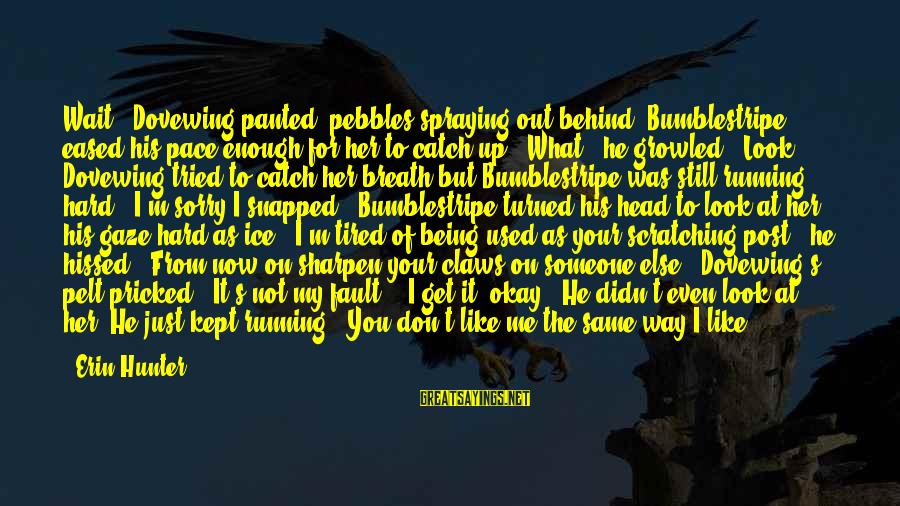 """I'm Tired Of You Sayings By Erin Hunter: Wait!"""" Dovewing panted, pebbles spraying out behind. Bumblestripe eased his pace enough for her to"""