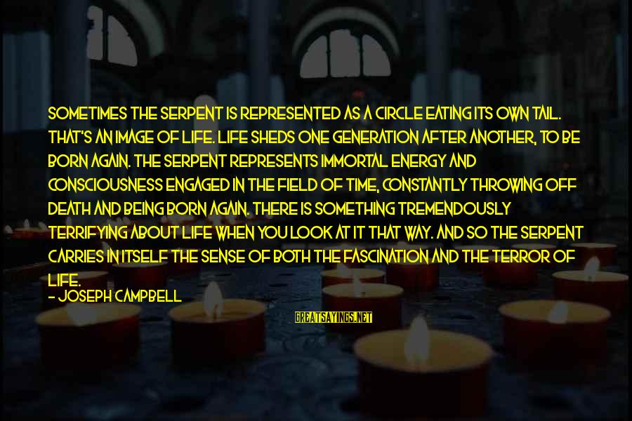 Image In Life Sayings By Joseph Campbell: Sometimes the serpent is represented as a circle eating its own tail. That's an image