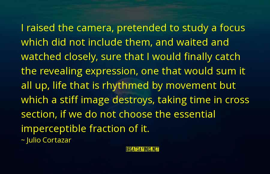 Image In Life Sayings By Julio Cortazar: I raised the camera, pretended to study a focus which did not include them, and