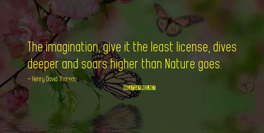 Imagination And Art Sayings By Henry David Thoreau: The imagination, give it the least license, dives deeper and soars higher than Nature goes.