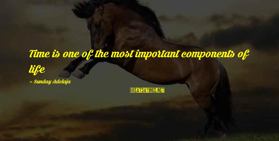 Importance Of Money In Life Sayings By Sunday Adelaja: Time is one of the most important components of life