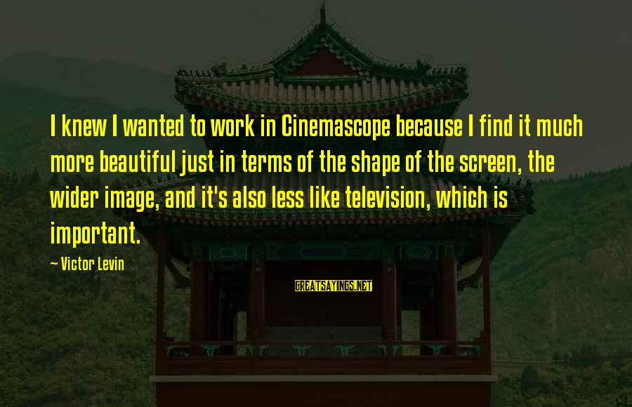 Inception Totem Sayings By Victor Levin: I knew I wanted to work in Cinemascope because I find it much more beautiful