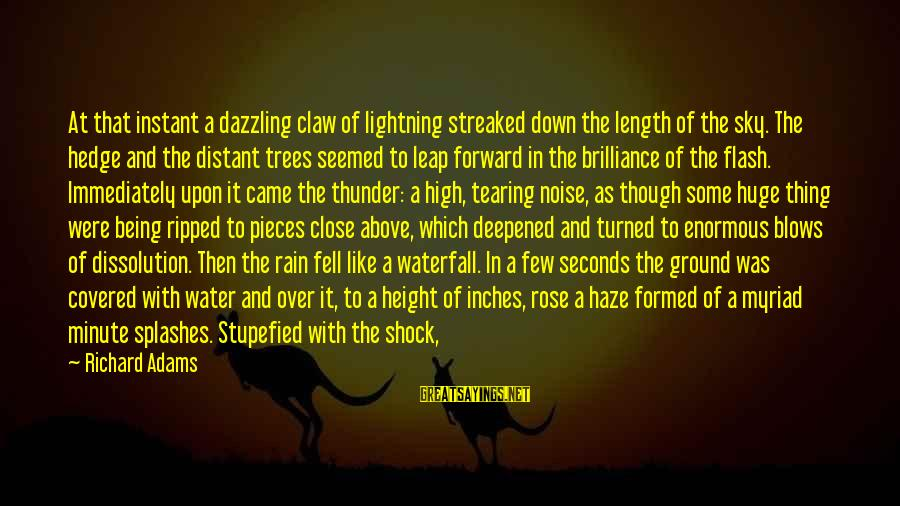 Inches Sayings By Richard Adams: At that instant a dazzling claw of lightning streaked down the length of the sky.