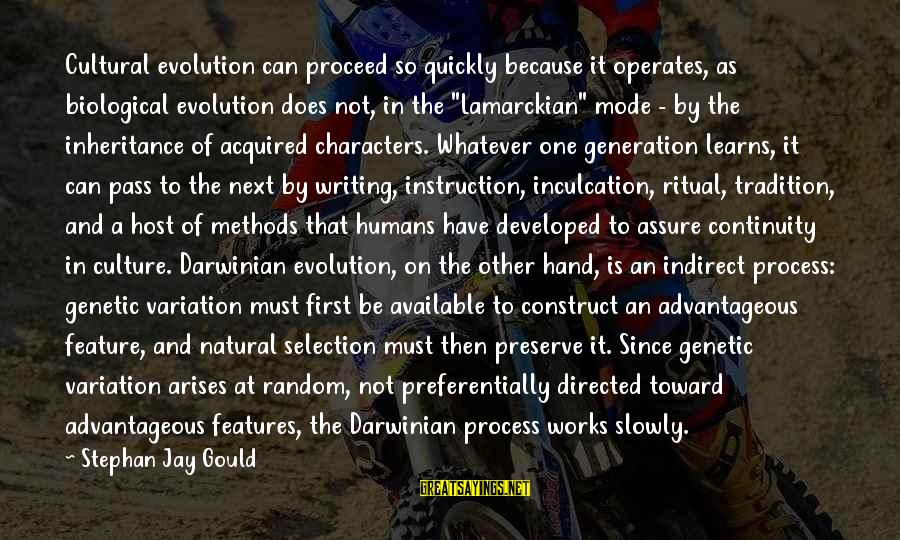 Inculcation Sayings By Stephan Jay Gould: Cultural evolution can proceed so quickly because it operates, as biological evolution does not, in