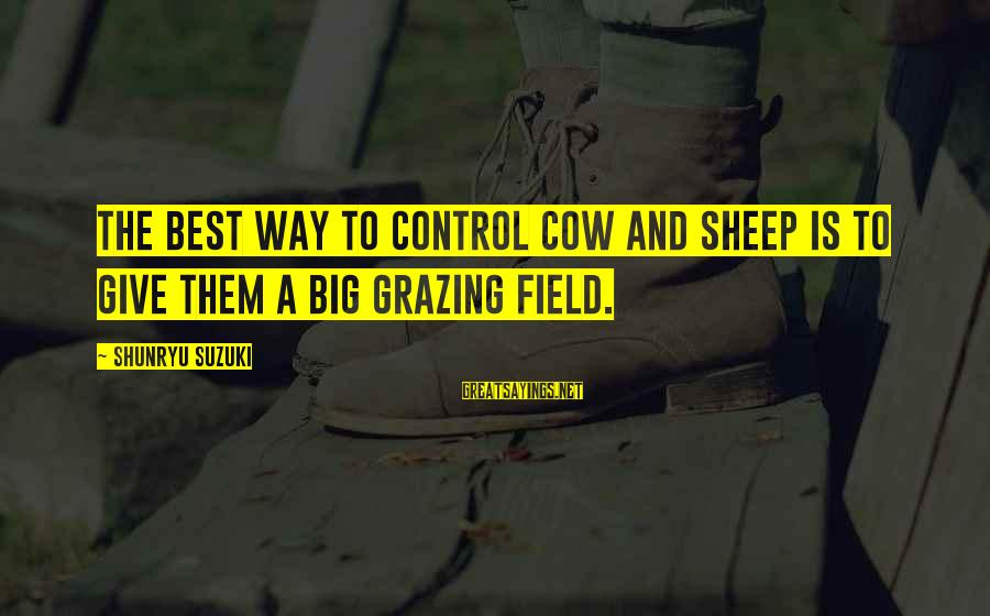 Indaba Sayings By Shunryu Suzuki: The best way to control cow and sheep is to give them a big grazing