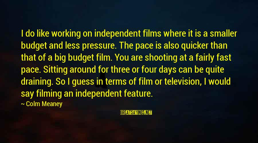 Independent Films Sayings By Colm Meaney: I do like working on independent films where it is a smaller budget and less