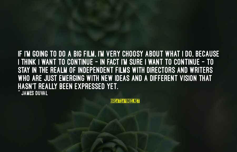 Independent Films Sayings By James Duval: If I'm going to do a big film, I'm very choosy about what I do,