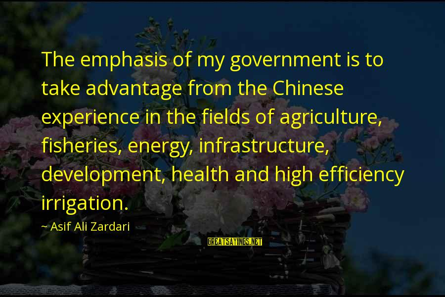 Infrastructure Sayings By Asif Ali Zardari: The emphasis of my government is to take advantage from the Chinese experience in the