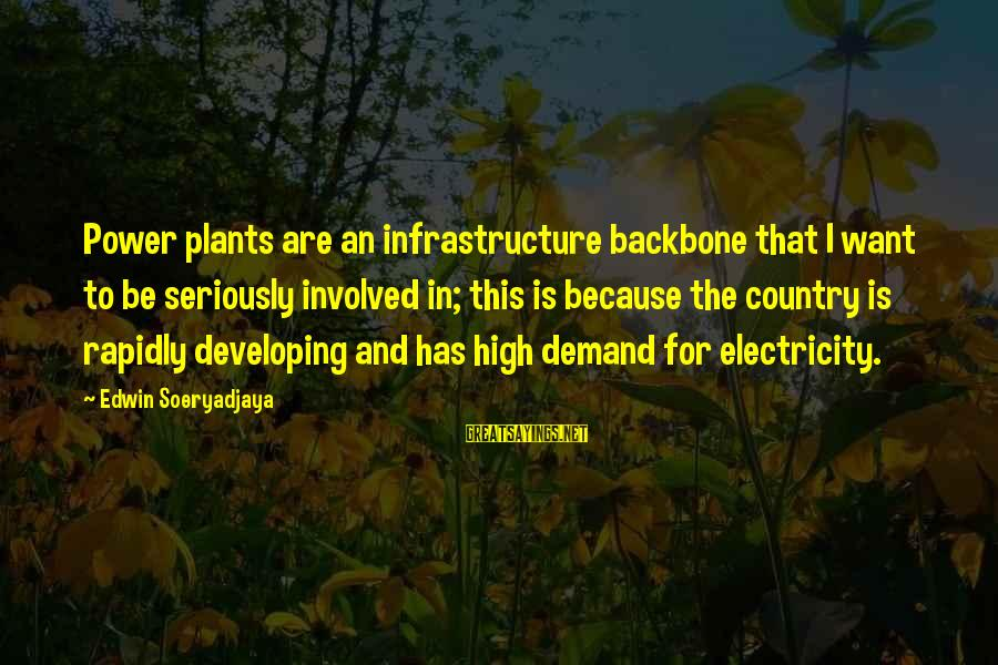 Infrastructure Sayings By Edwin Soeryadjaya: Power plants are an infrastructure backbone that I want to be seriously involved in; this