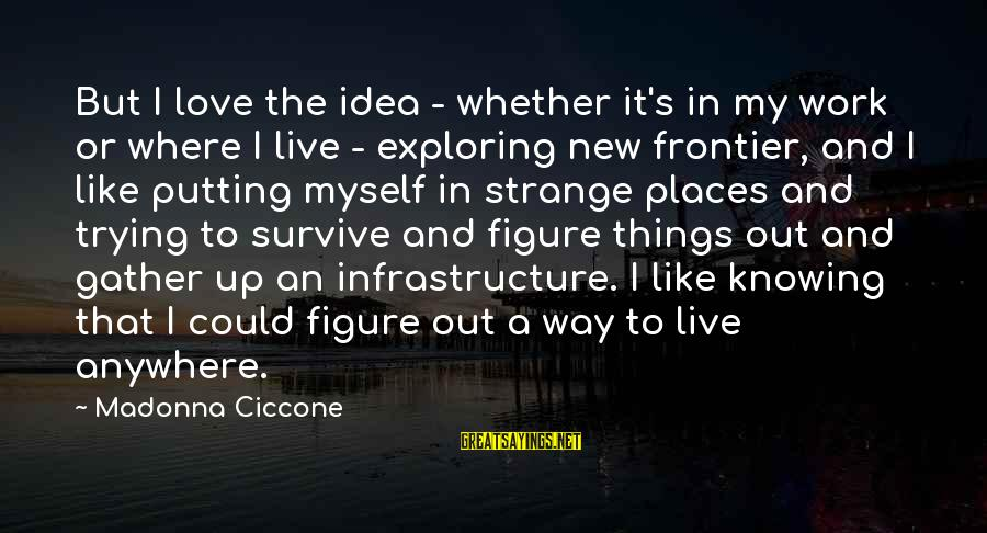 Infrastructure Sayings By Madonna Ciccone: But I love the idea - whether it's in my work or where I live