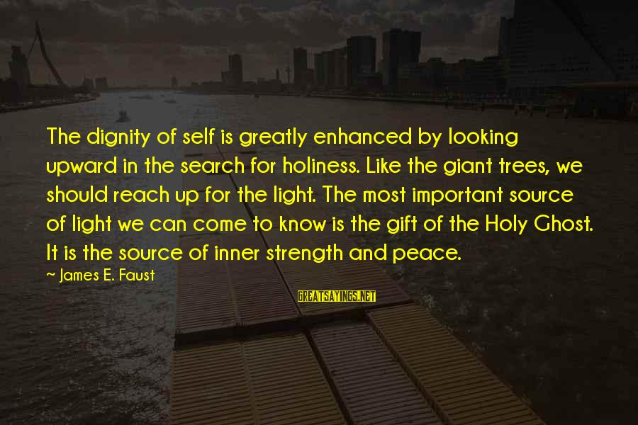 Inner Source Sayings By James E. Faust: The dignity of self is greatly enhanced by looking upward in the search for holiness.