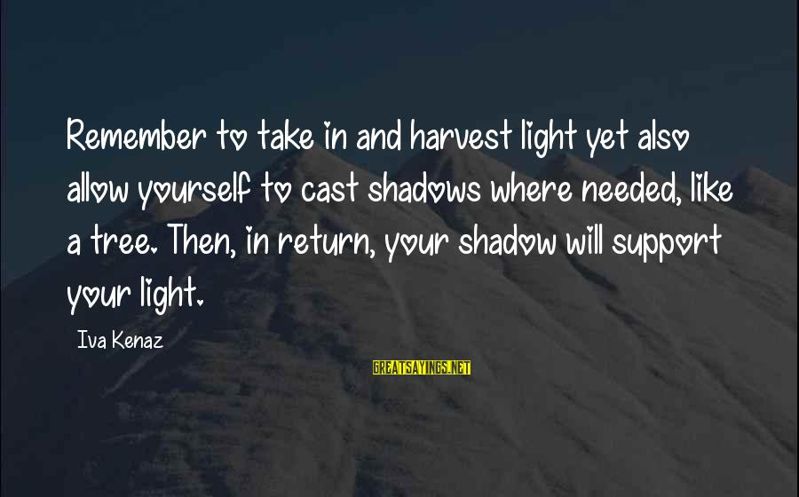 Inspirational Support Sayings By Iva Kenaz: Remember to take in and harvest light yet also allow yourself to cast shadows where