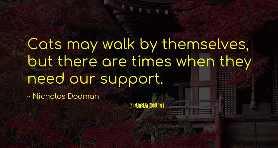 Inspirational Support Sayings By Nicholas Dodman: Cats may walk by themselves, but there are times when they need our support.