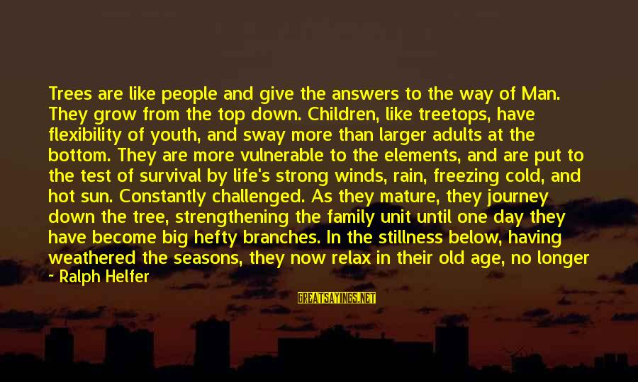 Inspirational Support Sayings By Ralph Helfer: Trees are like people and give the answers to the way of Man. They grow