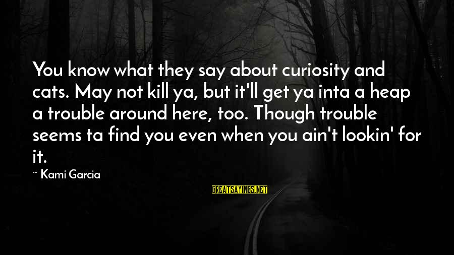 Inta Sayings By Kami Garcia: You know what they say about curiosity and cats. May not kill ya, but it'll
