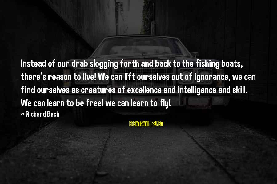 Intelligence And Ignorance Sayings By Richard Bach: Instead of our drab slogging forth and back to the fishing boats, there's reason to