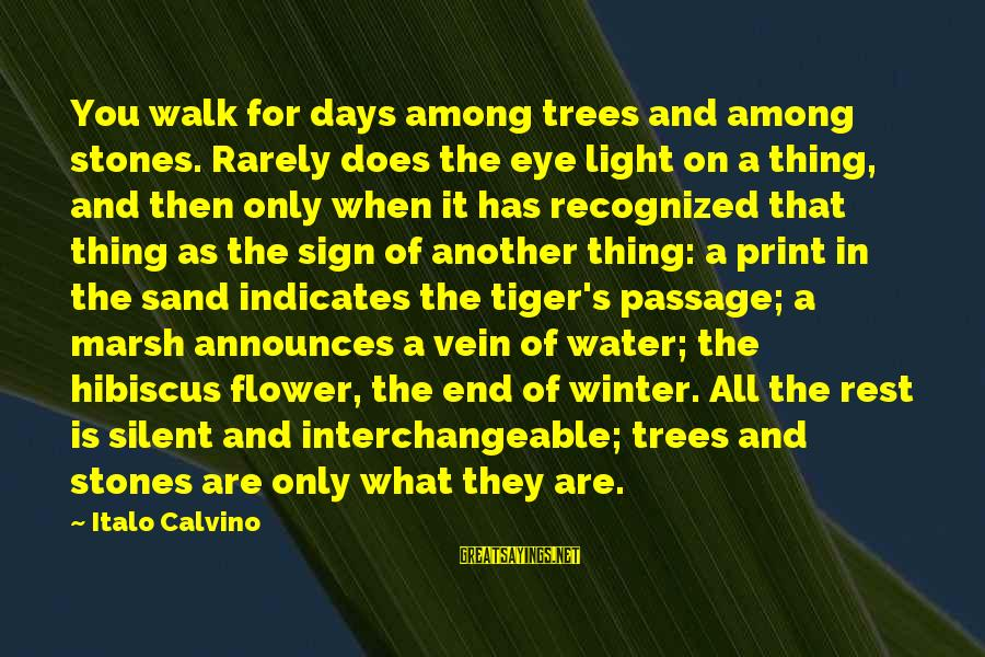 Interchangeable Sayings By Italo Calvino: You walk for days among trees and among stones. Rarely does the eye light on