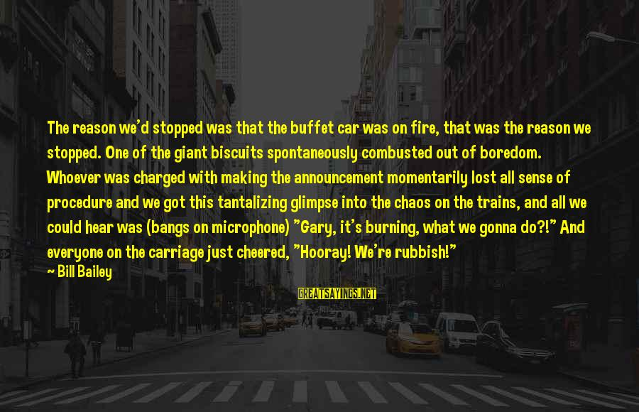 Into The Fire Sayings By Bill Bailey: The reason we'd stopped was that the buffet car was on fire, that was the